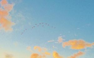 Early Morning Skies Regina MJ Kyle July 2014