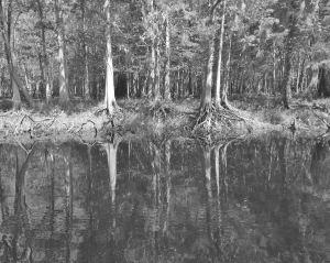 Secret Places on the River Regina MJ Kyle 2013
