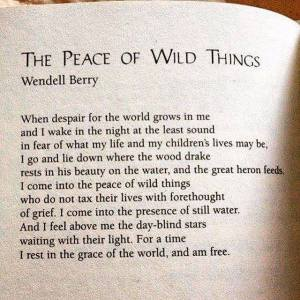 Courtesy of Wendell Berry
